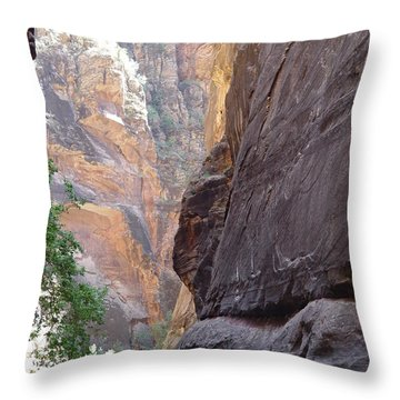 Throw Pillow featuring the photograph Zion Awe by Elizabeth Sullivan