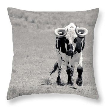 Zion Bull II Throw Pillow by Julie Niemela