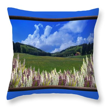 Throw Pillow featuring the photograph  A Beautiful View by Bernd Hau
