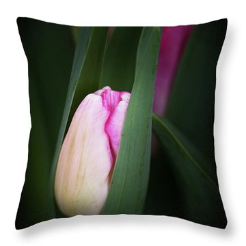 Throw Pillow featuring the photograph  A Pink Tulip  by Catherine Lau