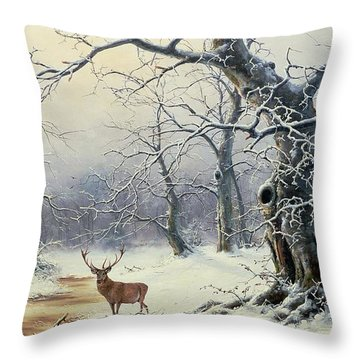 Snow Scene Throw Pillows