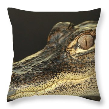 Al The Alligator Throw Pillow