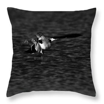American Avocet Dance  Throw Pillow