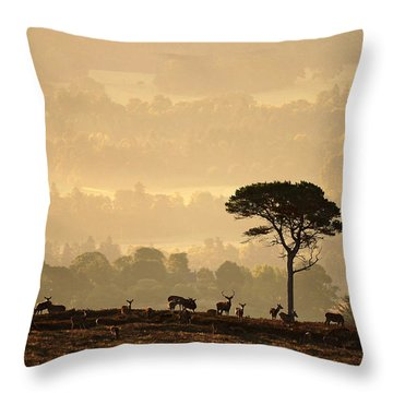 Autumn Morning, Strathglass Throw Pillow