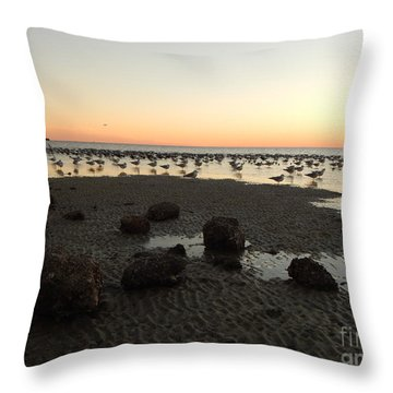 Beach Rocks Barnacles And Birds Throw Pillow by Expressionistart studio Priscilla Batzell