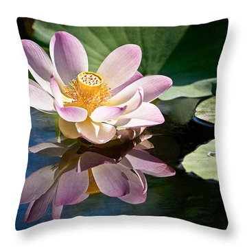 Casting A Beautiful Reflection Throw Pillow