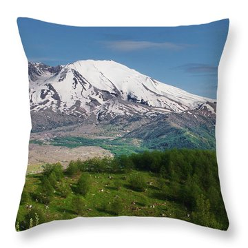 Castle Lake And Mt. St. Helens Throw Pillow