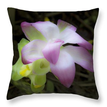 Curcuma Zedoaria  Throw Pillow