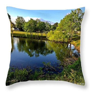 Throw Pillow featuring the photograph  Cypress Creek - No.430 by Joe Finney