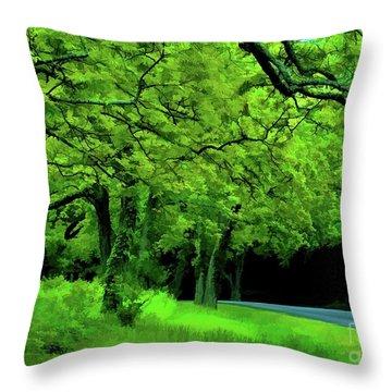 Faire Du Velo Throw Pillow