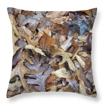 Fallen Leaves Throw Pillow by Robin Coaker