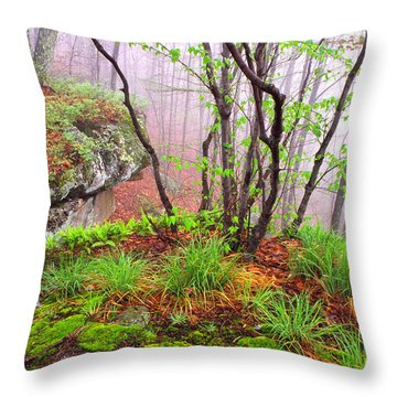Foggy Spring Morning Throw Pillow
