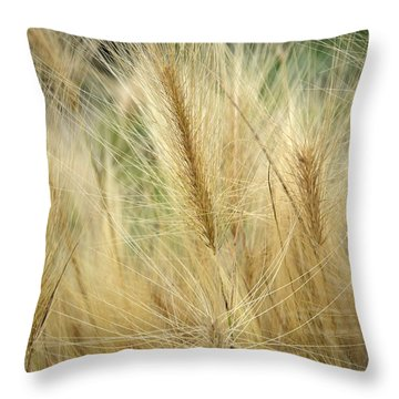 Foxtail Barley Throw Pillow by Jouko Lehto
