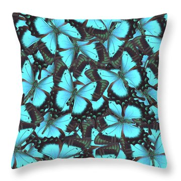 Green Swallowtail Butterfly Throw Pillow