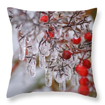 Holiday Ice Throw Pillow by Heidi Poulin
