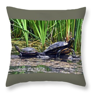 Throw Pillow featuring the photograph Turtles Sunning by Elaine Manley