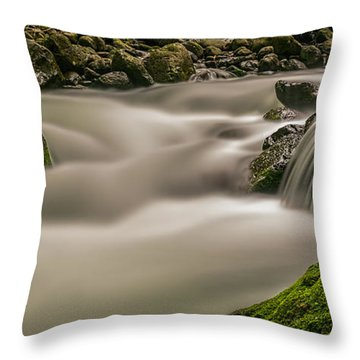 Iao Stream In The Iao Valley State Park Throw Pillow