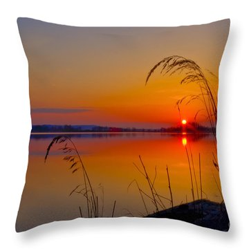 In The Morning At 4.04 Throw Pillow