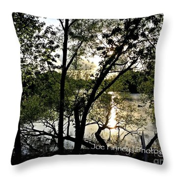 Throw Pillow featuring the photograph  In The Shadows  - No. 430 by Joe Finney