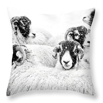 In Winters Grip Throw Pillow by Janet Burdon