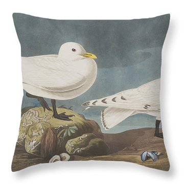 Ivory Gull Throw Pillow