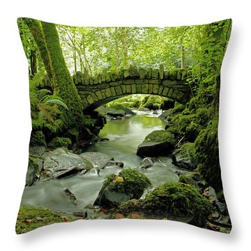 Kilfane Glen  Throw Pillow