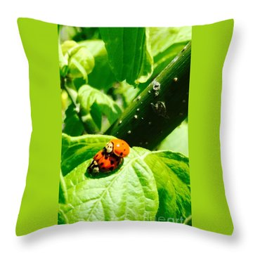 Throw Pillow featuring the photograph  Ladybugs In Love - No. 2016 by Joe Finney