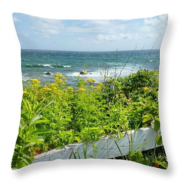 Manomet Point Throw Pillow