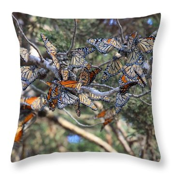 Monarch Mixed Cluster Throw Pillow