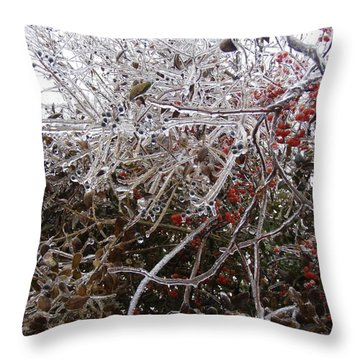 Nature's Dragon  Throw Pillow