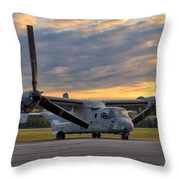 Osprey At Daybreak Throw Pillow