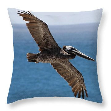 Pelican Flying Wings Outstretched Throw Pillow