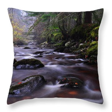 Reelig Glen Throw Pillow