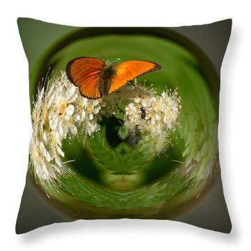 Throw Pillow featuring the photograph  Scarce Copper 3 by Jouko Lehto