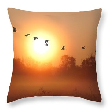 Returning South Throw Pillow