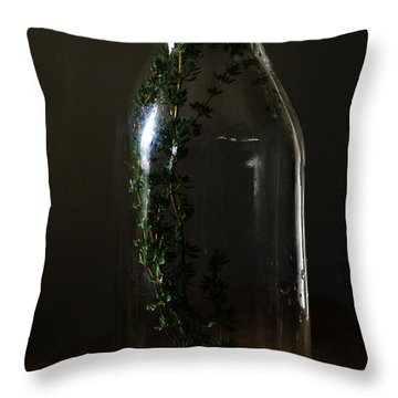 Time In A Bottle   861 Throw Pillow