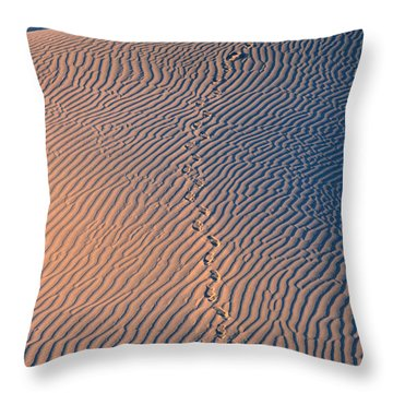 Tracks At First Light In Death Valley Throw Pillow by Sandra Bronstein
