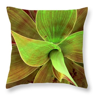 Translucense Throw Pillow