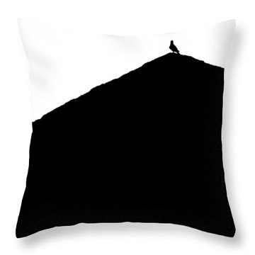 Unchained  Throw Pillow by Prakash Ghai