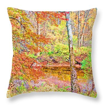 Throw Pillow featuring the photograph  Woods In Autumn Montgomery Cty Pennsylvania by A Gurmankin