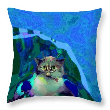 007 The Under Covers Cat Throw Pillow