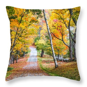 #0119 - New Hampshire Throw Pillow