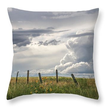 #0149 - Axtel Anceney, Southwest Montana Throw Pillow