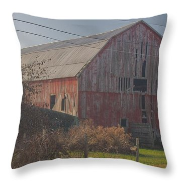0153 - Dodge Road Red I Throw Pillow