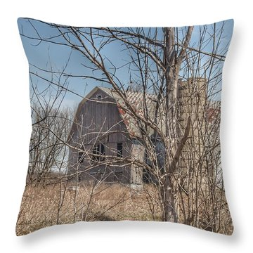 0162 - Hill Road Grey I Throw Pillow