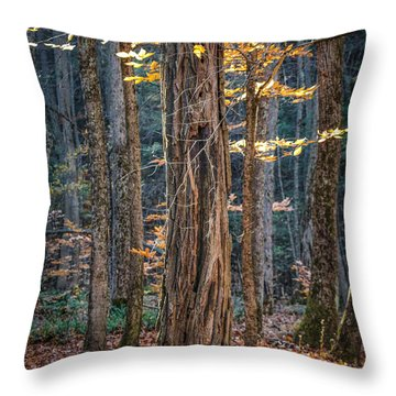 #0187 - Dummerston, Vermont Throw Pillow