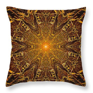 Throw Pillow featuring the photograph 033 by Phil Koch