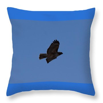 Throw Pillow featuring the photograph Red Tail Hawk Male Tower Rd Denver Co 0898 by Margarethe Binkley