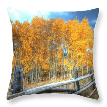 Autumn Fenced Throw Pillow