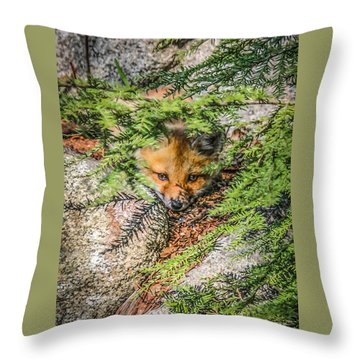 #0527 - Fox Kit Throw Pillow